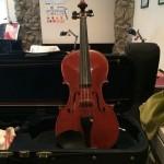Young violin